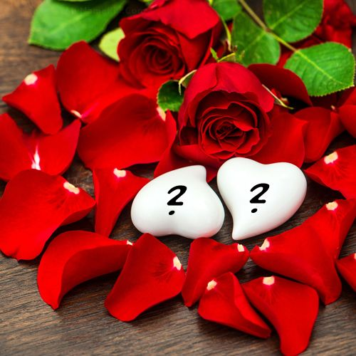 Beautiful rose petals and hearts love alphabet name dp images