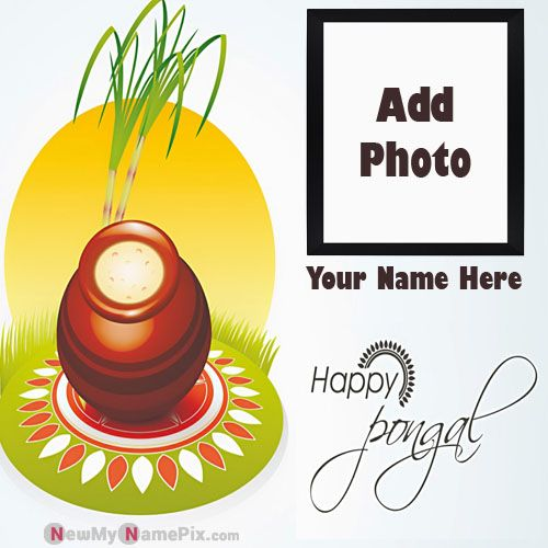 Create Name And Photo Pongal Wishes Greeting Images