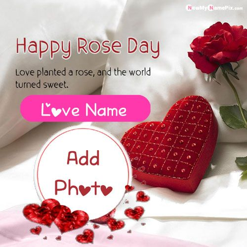 Happy Rose Day Wishes Name And Photo Card Create Free