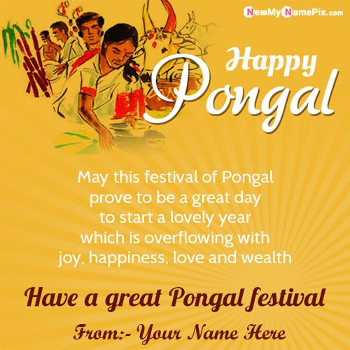Pongal Wishes Quotes With Name Pictures Online Creator