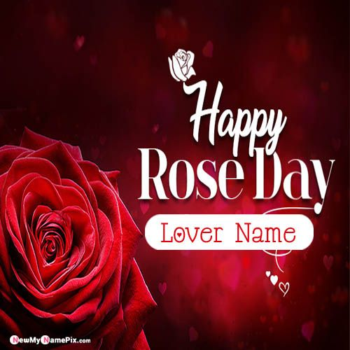 Personal Lover Name Wishes Awesome Happy Rose Day Pictures
