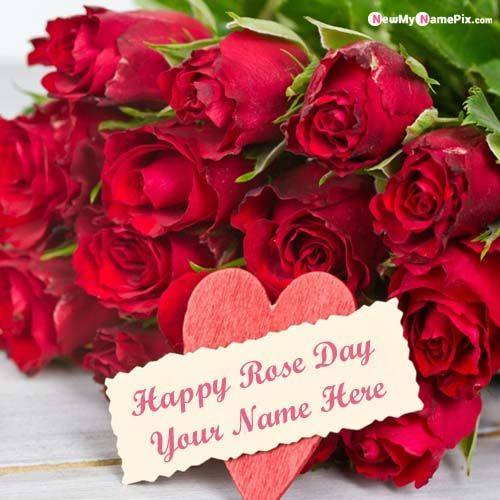 Special Name Wishes Happy Rose Day Profile Pictures