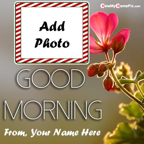 Good morning images edit name with photo wishes greeting card